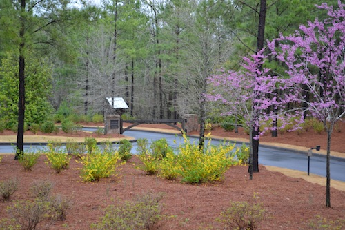 Spring is in the air...view of the Retreat Entrance